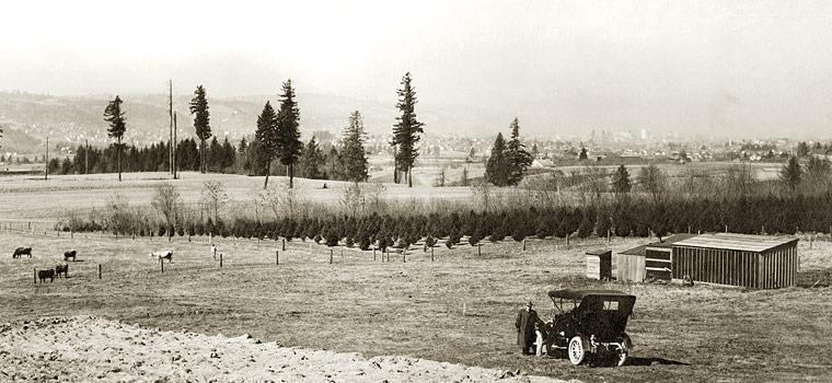 Crystal Springs Farm, 1908