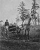 Cardwell, Mae, 1892, bb008619