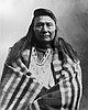 Heinmot Tooyalakekt (Chief Joseph), 1890s.