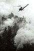 helicopter over Oxbow fire in Lane County, Aug 1966.