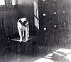 Two Bits inside Applegate Ranger Station, about 1943.