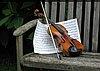 Virginia Euwer Wolff's violin